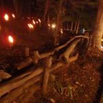竹灯籠祭り開催しました!