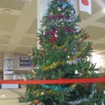 今年もクリスマスツリーを飾っています。
